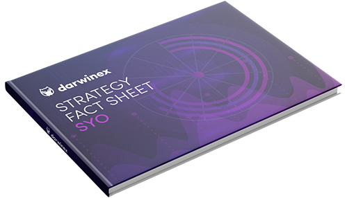 Strategy Fact Sheet